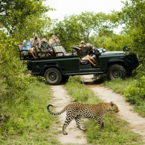 South Africa Holidays 2019 / 2020 | Emirates Holidays