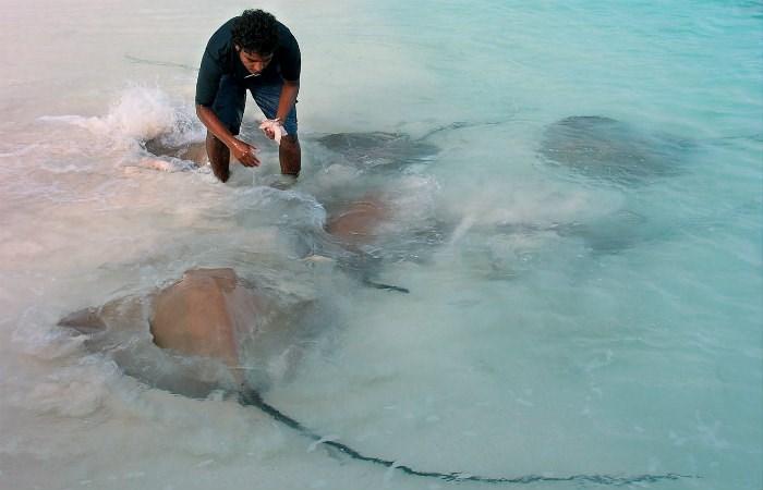 Maldives Resorts Amp Vacation Packages 2018 2019